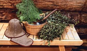 Польза и вред дубового и березового веника для бани